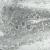 Pulegoso